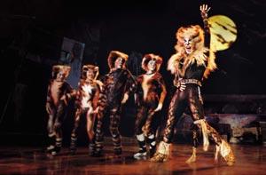 """Cats"" - Das Musical (© Brinkhoff/Mögenburg/Theater am Potsdamer Platz)"