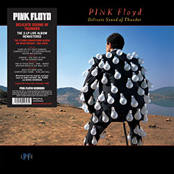"Pink Floyd ""Delicate Sound Of Thunder"""