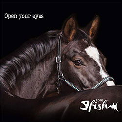 """Tone Fish """"Open Your Eyes"""""""