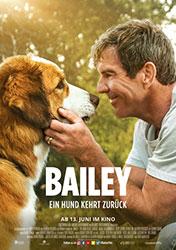 """""""Bailey - Ein Hund kehrt zurück"""" (© 2019 Constantin Film Verleih GmbH)"""