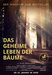 """Das geheime Leben der Bäume"" Filmplakat (© 2019 Constantin Film Verleih GmbH)"