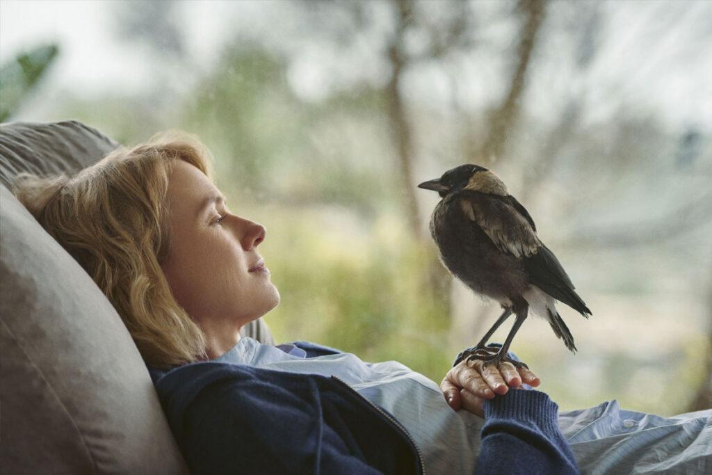 """""""Beflügelt – Ein Vogel namens Penguin Bloom"""" Szenenbild (© LEONINE)"""
